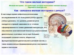 В настоящее время нейропсихологическими исследованиями М. М. Кольцовой (1979