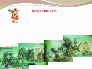 - тарихи даму кезеңдері - биологиялық факторлары - әлеуметтік факторлары Ант