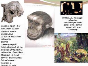 Сахелонтроп - 6-7 млн. жыл бұрын тіршілік еткен. Сахарының оңтүстік маңынан т