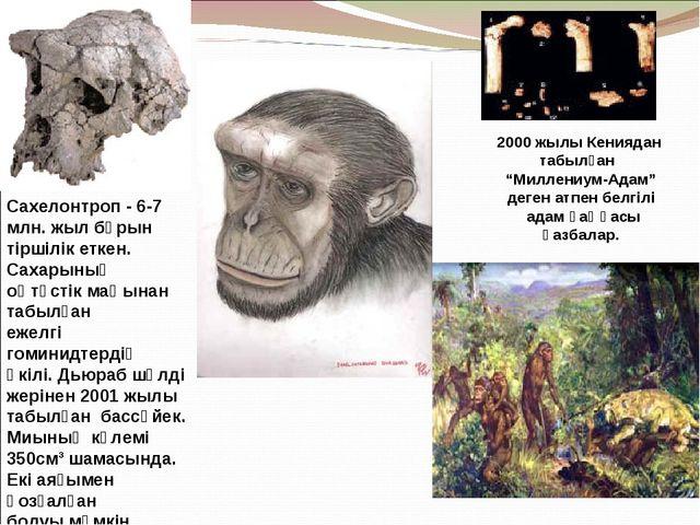 Сахелонтроп - 6-7 млн. жыл бұрын тіршілік еткен. Сахарының оңтүстік маңынан т...