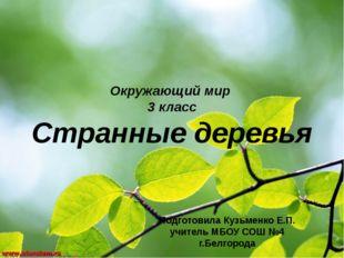 Окружающий мир 3 класс Странные деревья Подготовила Кузьменко Е.П. учитель МБ