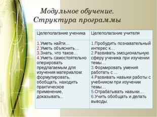 Модульное обучение. Структура программы Целеполагание ученика Целеполагание у