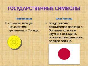 В сознании японцев неразделимы хризантема и Солнце.. представляет собойбелое