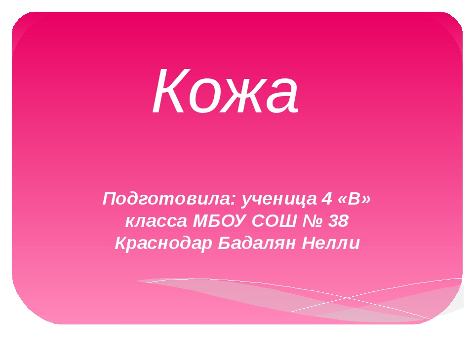 Кожа Подготовила: ученица 4 «В» класса МБОУ СОШ № 38 Краснодар Бадалян Нелли