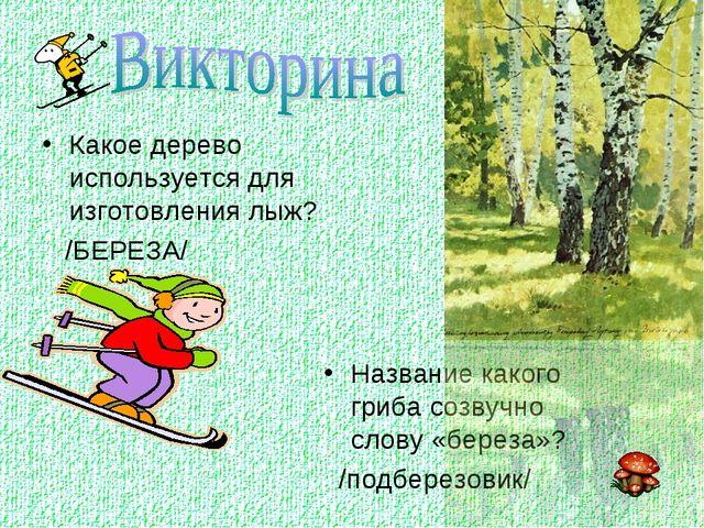 Какое дерево используется для изготовления лыж? /БЕРЕЗА/ Название какого гриб...