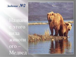 Задание №2 -Название этого вида животного – Медведь бурый. Какое из этих двух
