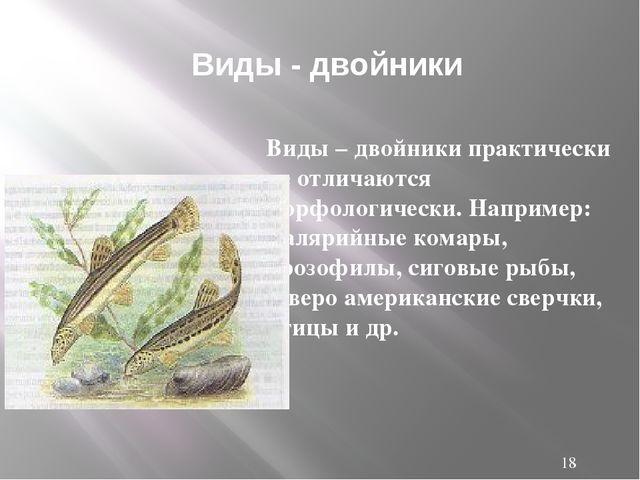Виды – двойники практически не отличаются морфологически. Например: малярийн...
