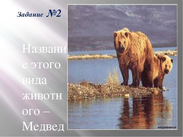 Задание №2 -Название этого вида животного – Медведь бурый. Какое из этих двух...