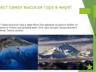 2.Эверест самая высокая гора в мире! Нет! Самая высокая гора в мире Малу Киа