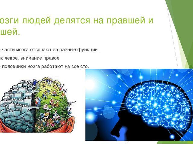 7.Мозги людей делятся на правшей и левшей. Обе части мозга отвечают за разные...