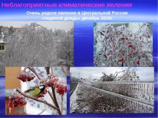 Неблагоприятные климатические явления Очень редкое явление в Центральной Росс