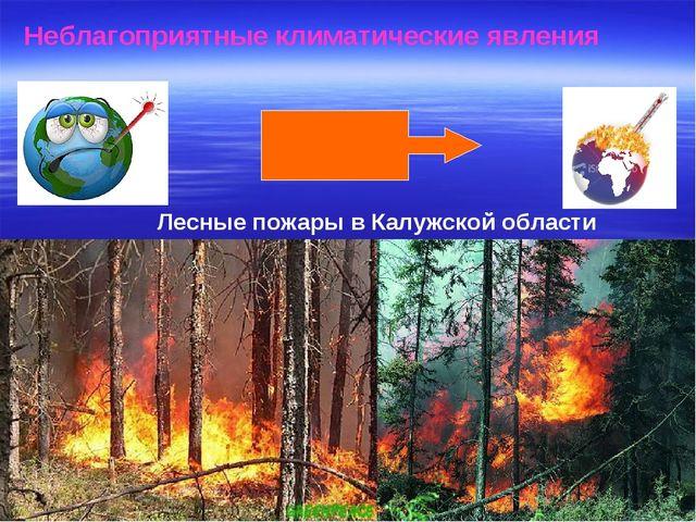 Неблагоприятные климатические явления Лесные пожары в Калужской области