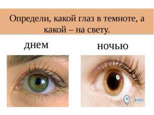 Определи, какой глаз в темноте, а какой – на свету. днем ночью