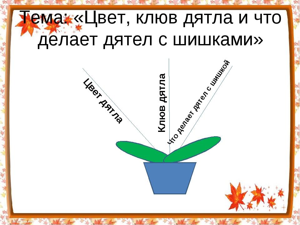 Тема: «Цвет, клюв дятла и что делает дятел с шишками» Цвет дятла Клюв дятла Ч...