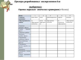 Примеры разработанных инструментов для оценивания (выборочно): Оценка мораль