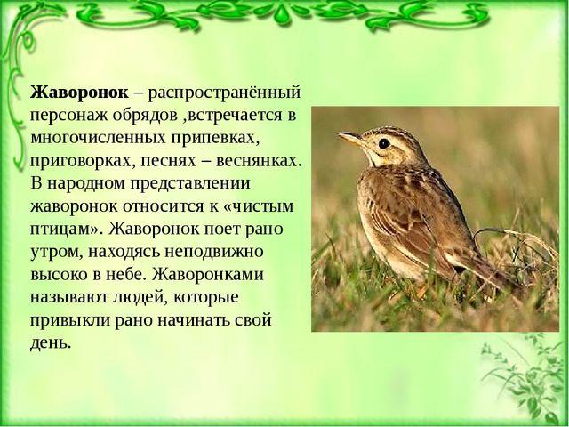 Жаворонок – распространённый персонаж обрядов ,встречается в многочисленных п...