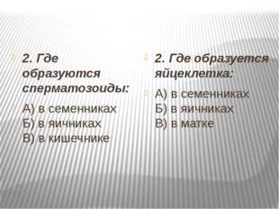 2. Где образуются сперматозоиды: А) в семенниках Б) в яичниках В) в кишечни
