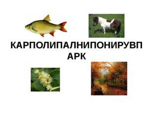 КАРПОЛИПАЛНИПОНИРУВПАРК