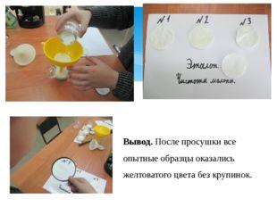 Опыт № 3. Чистота молока. Вывод. После просушки все опытные образцы оказались
