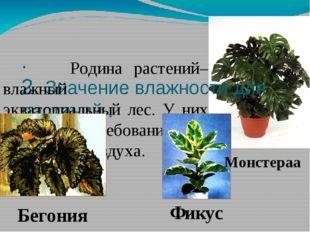 . 2. Значение влажности для растений . Родина растений– влажный экваториальны