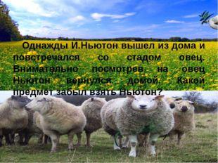Однажды И.Ньютон вышел из дома и повстречался со стадом овец. Внимательно по