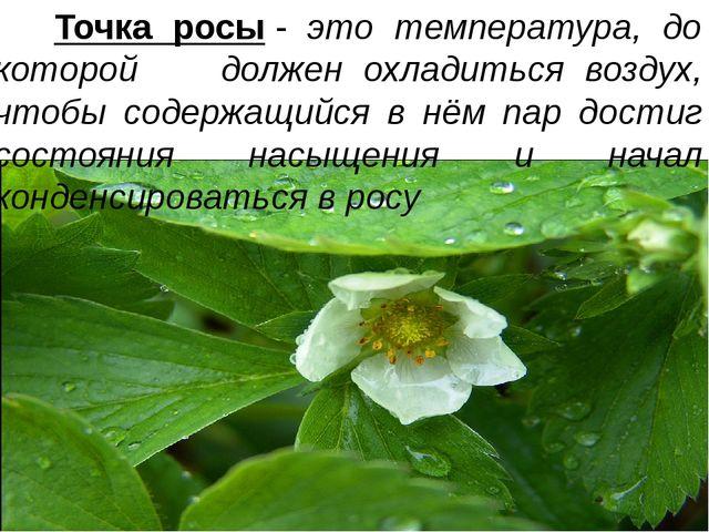 Точка росы- это температура, до которой должен охладиться воздух, чтобы сод...