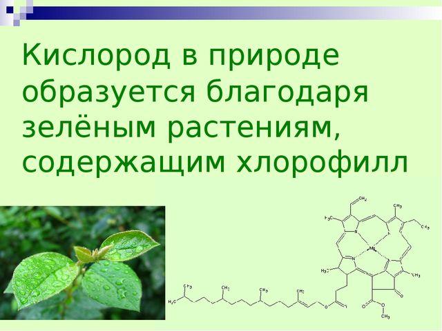 Кислород в природе образуется благодаря зелёным растениям, содержащим хлороф...