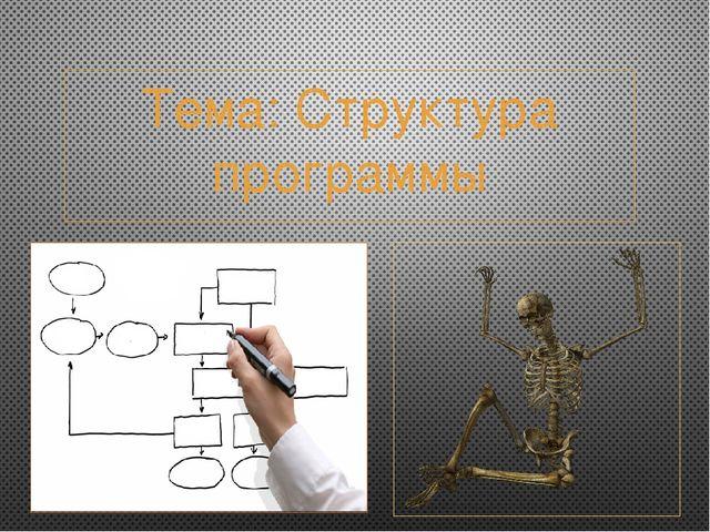 Тема: Структура программы