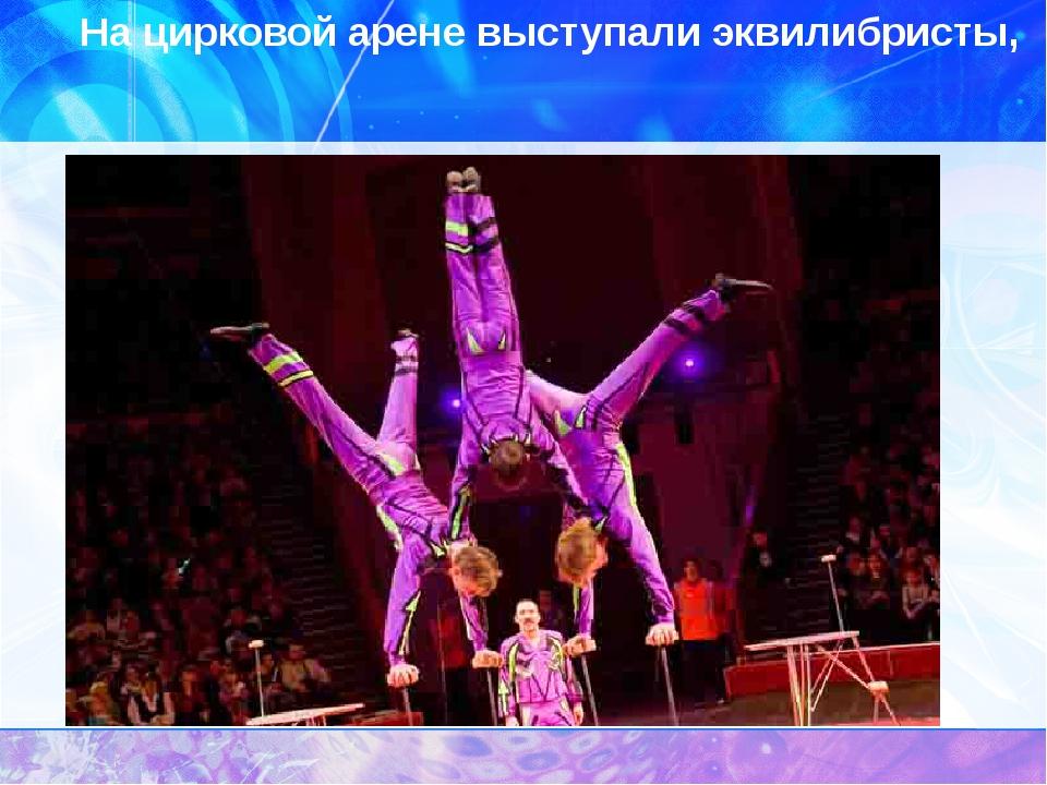 На цирковой арене выступали эквилибристы,