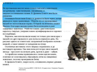 К О Ш К А На протяжении многих веков кошки считались животными загадочными, т