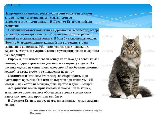К О Ш К А На протяжении многих веков кошки считались животными загадочными, т...