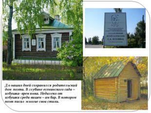 До наших дней сохранился родительский дом поэта. В глубине есенинского сада –