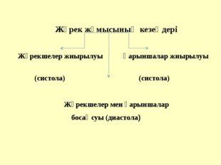 Жүрек жұмысының кезеңдері  Жүрекшелер жиырылуы Қарыншалар жиырылуы (систола