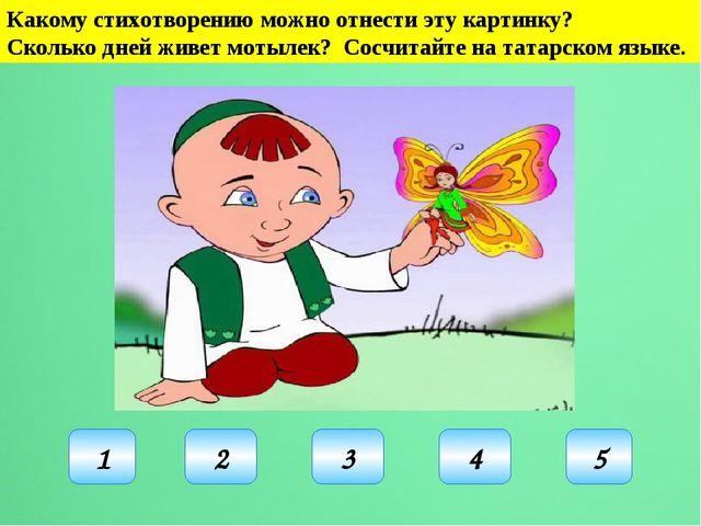 Какому стихотворению можно отнести эту картинку? Сколько дней живет мотылек?...