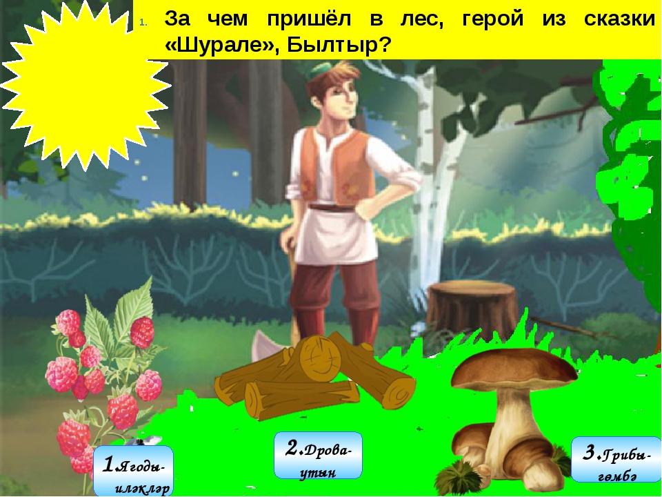 3.Грибы- гөмбә 1.Ягоды- җиләкләр 2.Дрова- утын За чем пришёл в лес, герой из...
