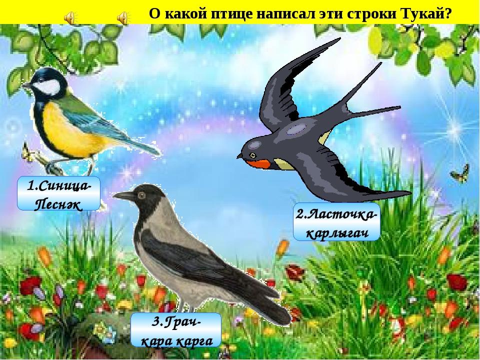 3.Грач- кара карга 1.Синица- Песнәк 2.Ласточка- карлыгач О какой птице написа...