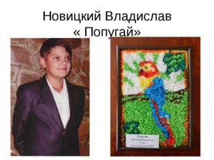 Новицкий Владислав « Попугай»