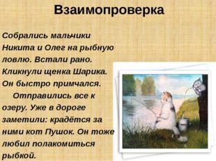 Взаимопроверка Собрались мальчики Никита и Олег на рыбную ловлю. Встали рано.