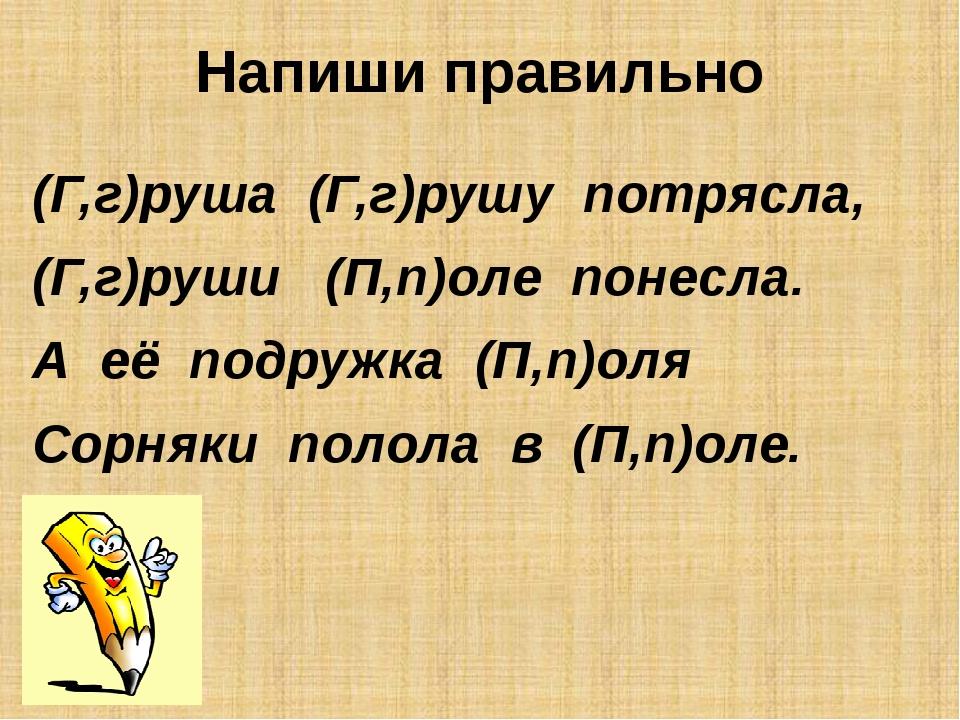 Напиши правильно (Г,г)руша (Г,г)рушу потрясла, (Г,г)руши (П,п)оле понесла. А...