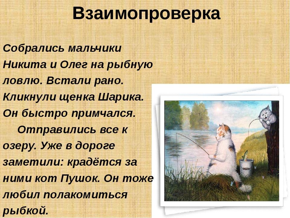 Взаимопроверка Собрались мальчики Никита и Олег на рыбную ловлю. Встали рано....