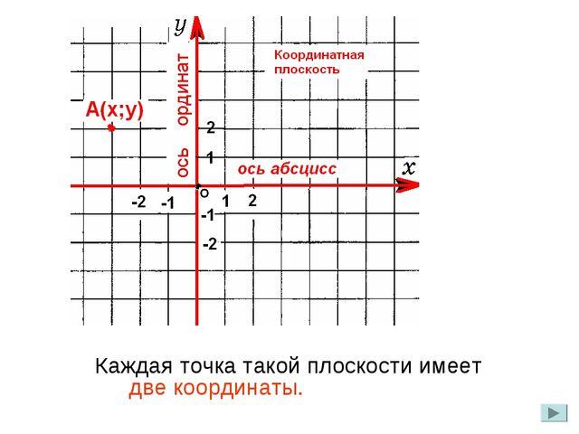 Каждая точка такой плоскости имеет две координаты.