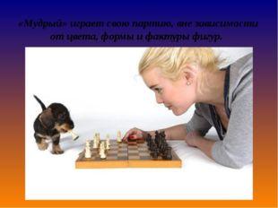 «Мудрый» играет свою партию, вне зависимости от цвета, формы и фактуры фигур.