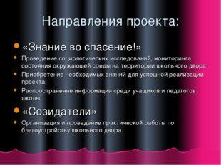 Направления проекта: «Знание во спасение!» Проведение социологических исследо