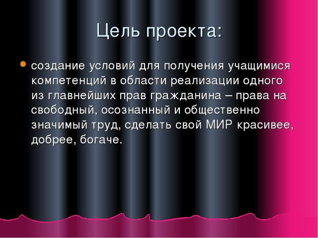 Цель проекта: создание условий для получения учащимися компетенций в области...