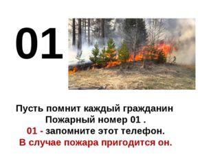 01 Пусть помнит каждый гражданин Пожарный номер 01 . 01 - запомните этот тел