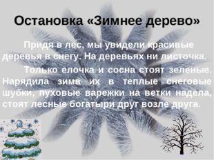 Остановка «Зимнее дерево» Придя в лес, мы увидели красивые деревья в снегу.