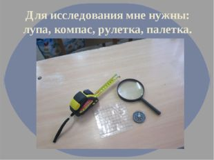 Для исследования мне нужны: лупа, компас, рулетка, палетка.
