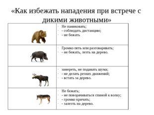 «Как избежать нападения при встрече с дикими животными» Не паниковать; - собл