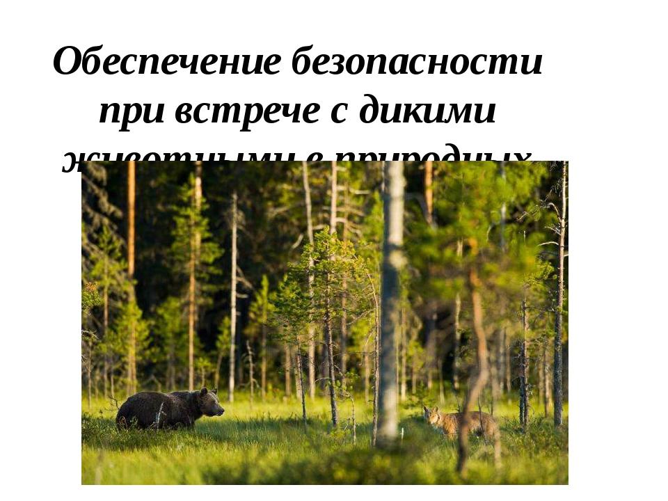 Обеспечение безопасности при встрече с дикими животными в природных условиях