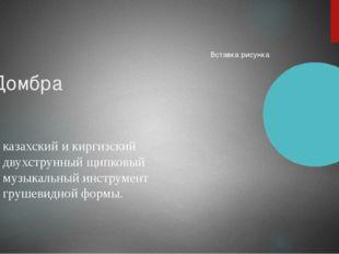 Домбра казахский и киргизский двухструнный щипковый музыкальный инструмент гр